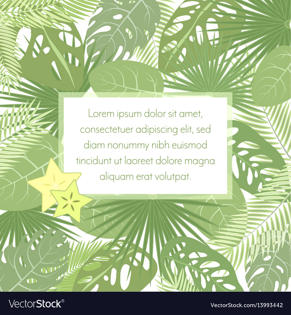 Tropic leaves background with frame for your text