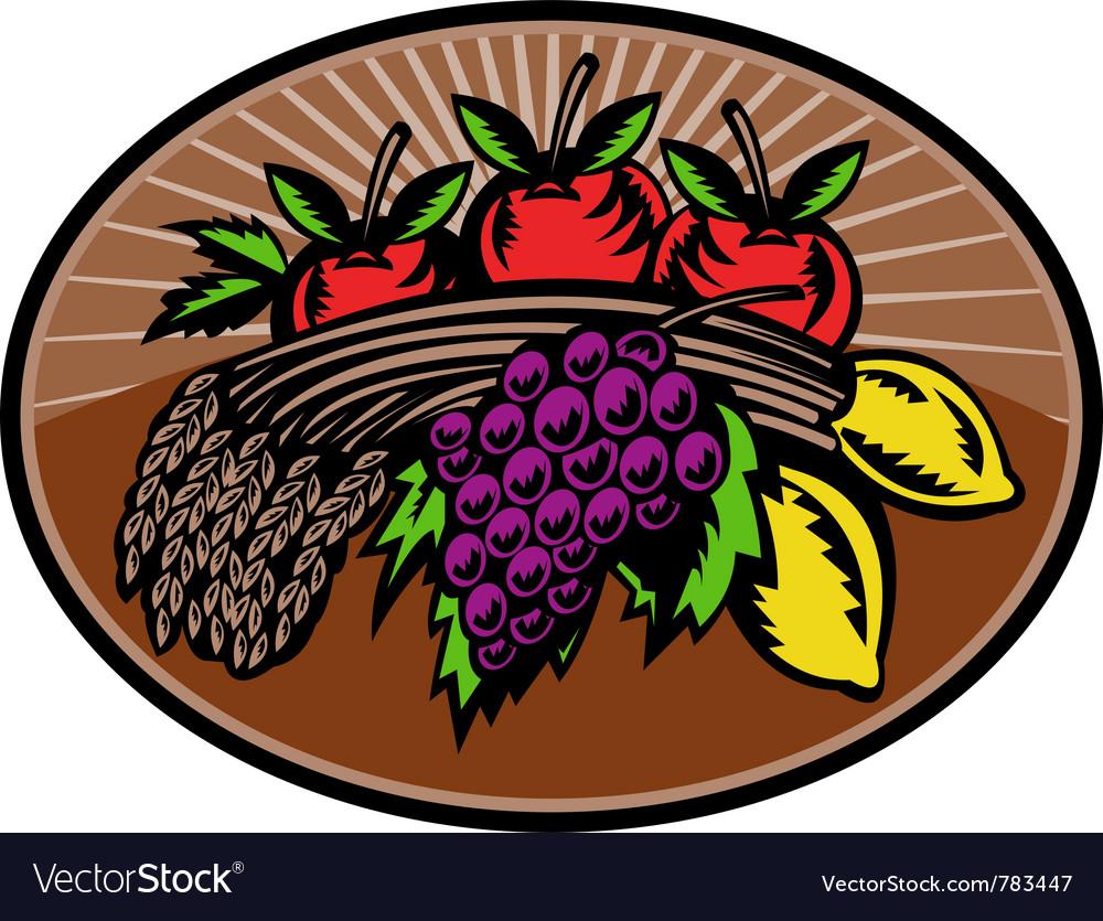Fruit wheat harvest vector image