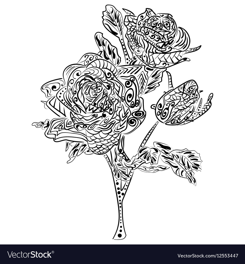 Zentangle Rose Flower Floral Pattern Royalty Free Vector