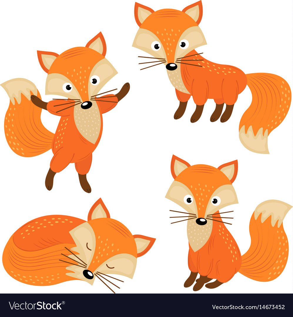 Set of isolated cute foxes part 2 vector image