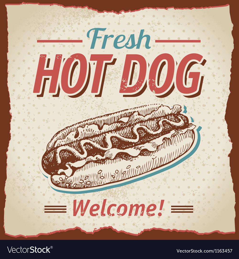 Vintage hot dogs background vector image