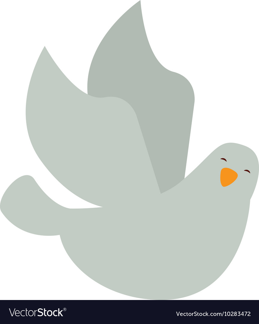 Dove bird isolated icon vector image