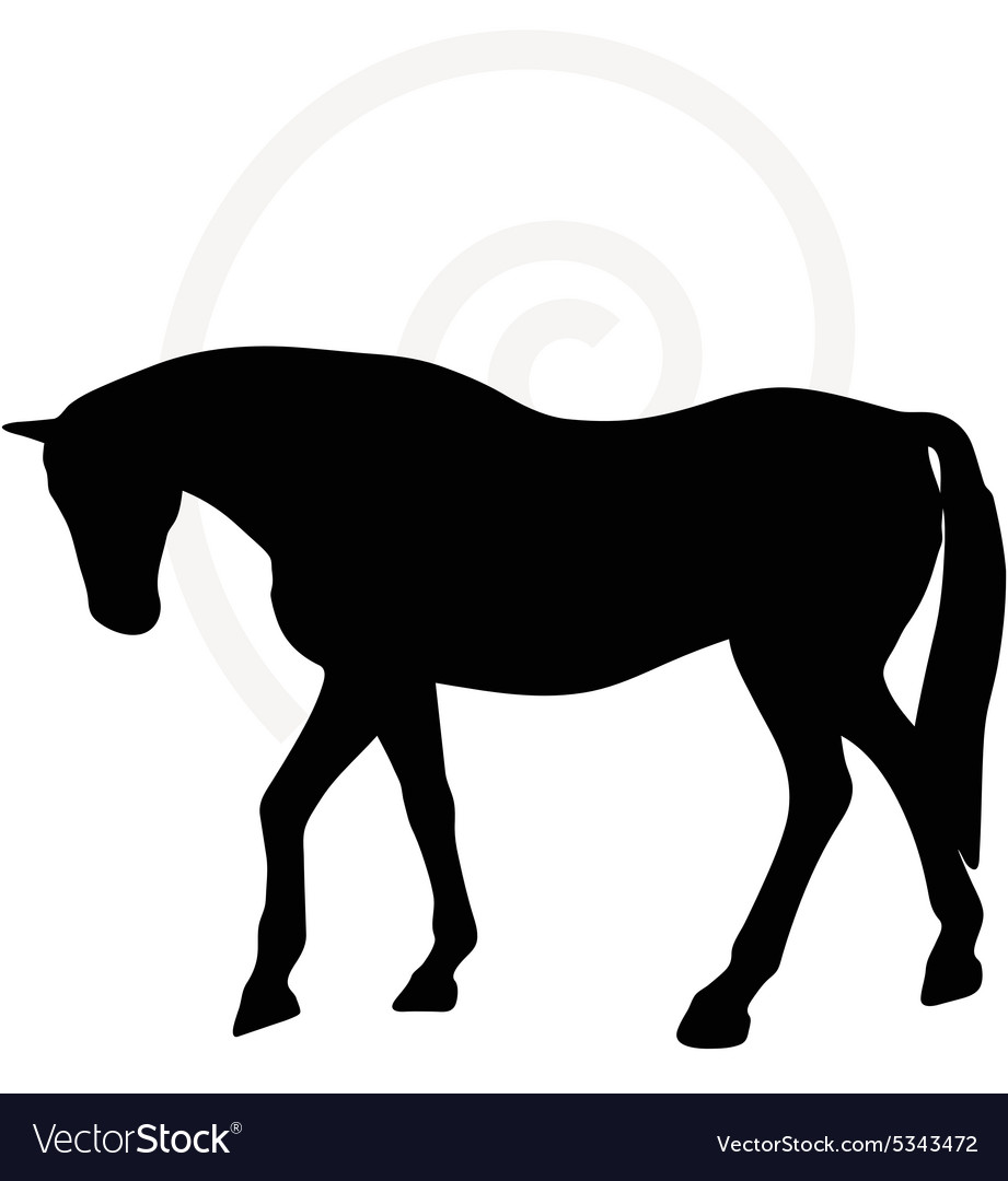 Horse Silhouette In Walking Head Down Royalty Free Vector