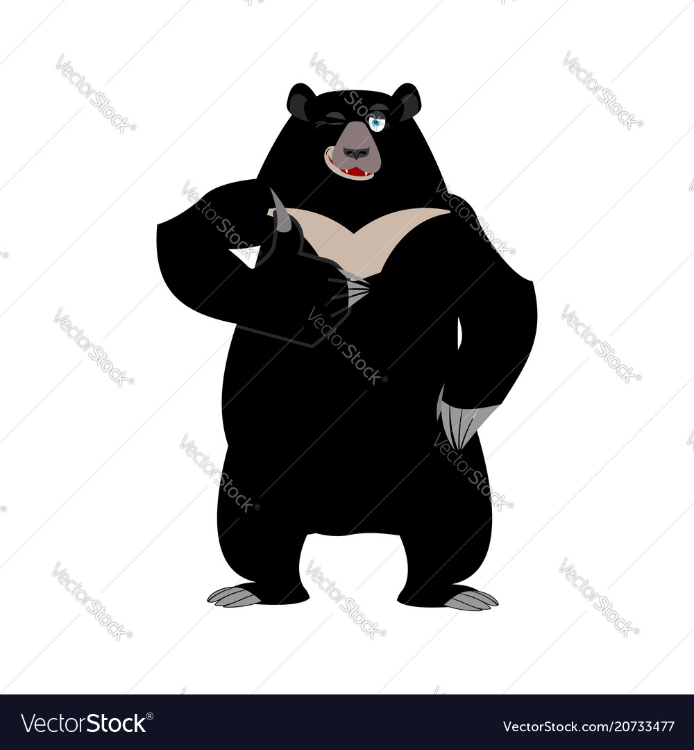 Himalayan bear thumbs up and winks cheerful wild vector image