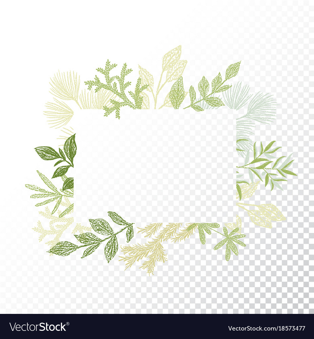 Rectangular frame branches and leaves