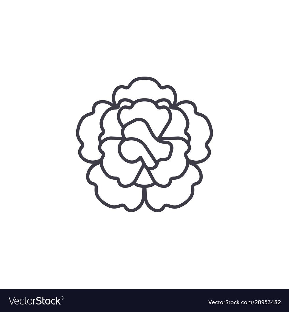Floral carnation line icon concept floral