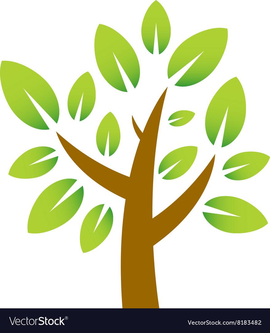 Plum-Tree-380x400