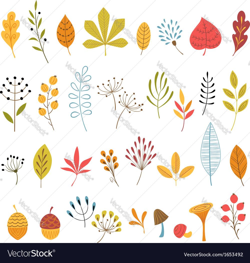 Autumn floral design elements