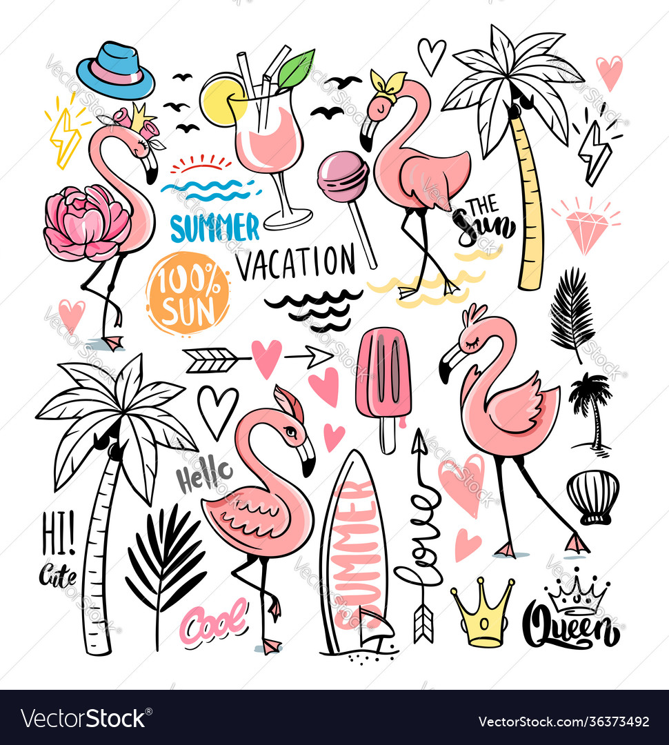 Flamingo doodle with tropical elements vector