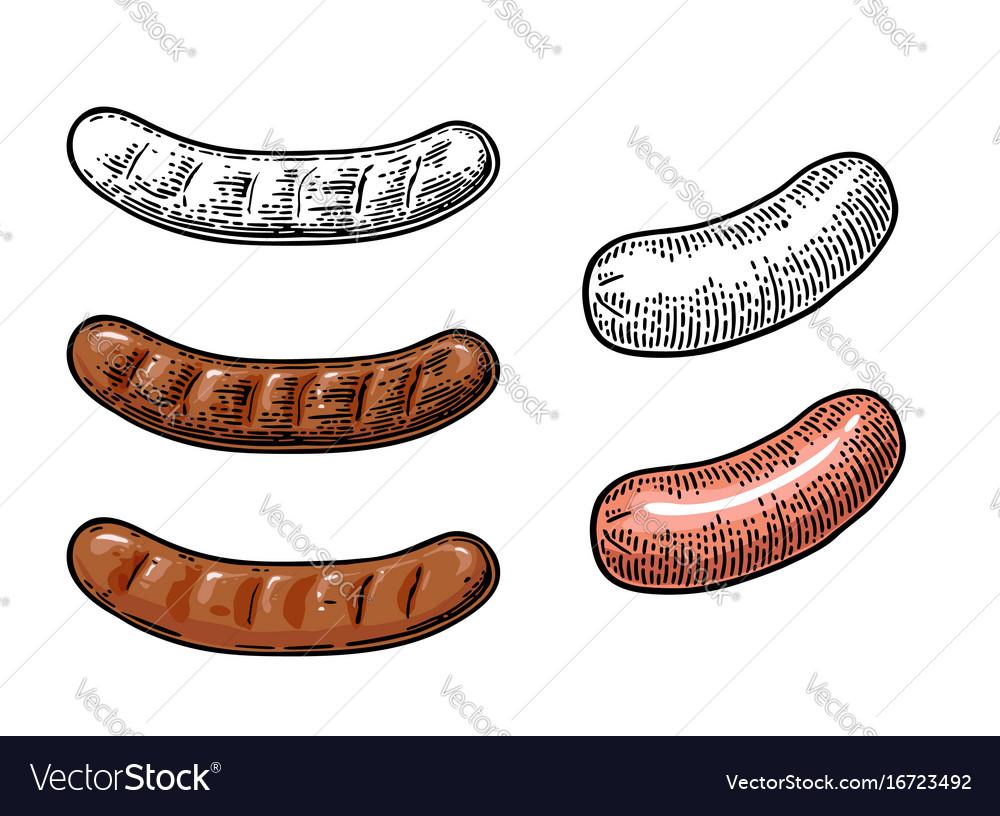 Sausage vintage engraving