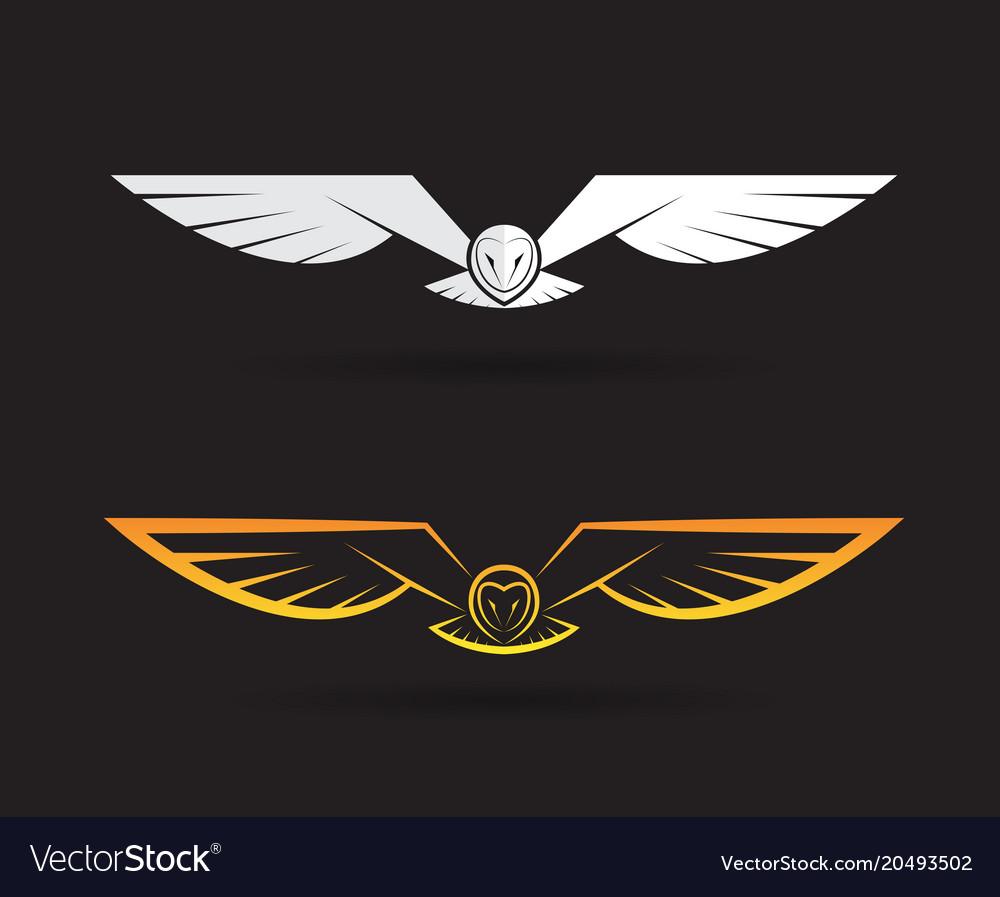 Owl design on black background bird animals vector image