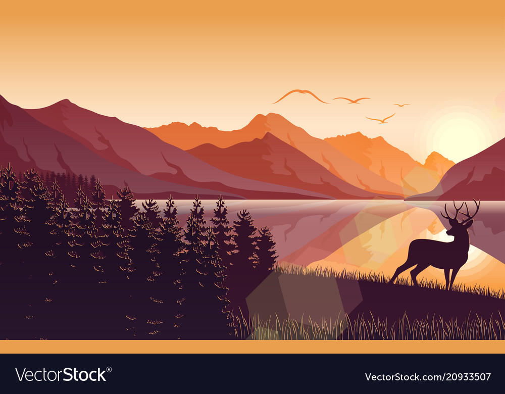 Sunset mountain landscape with deer on lake