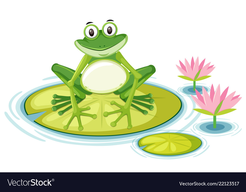 Happy Frog On Lily Pad Royalty Free Vector Image