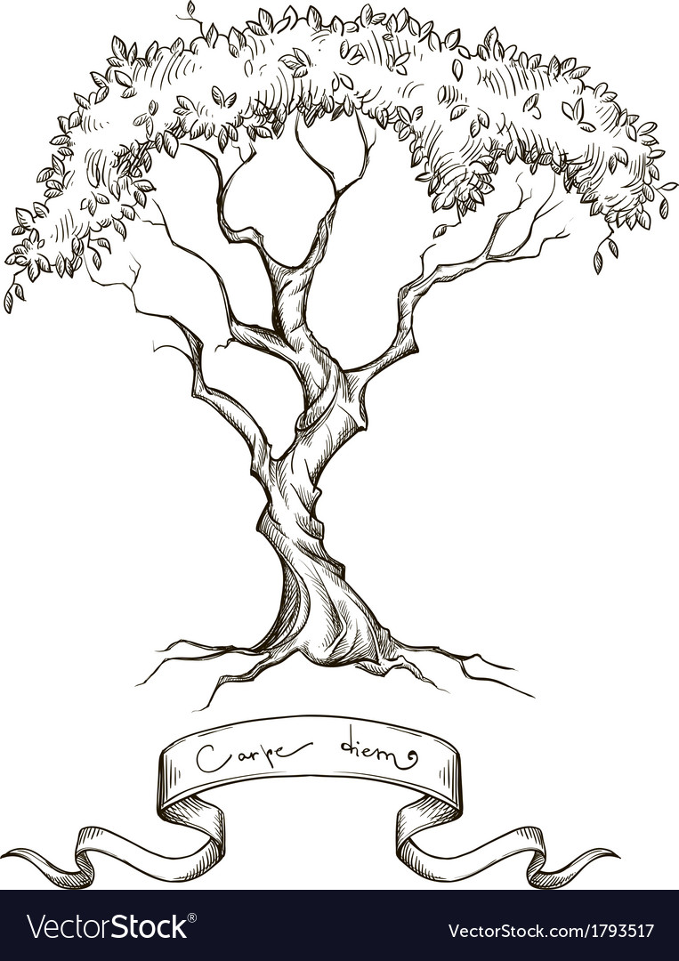 Old tree with ribbon banner hand drawn