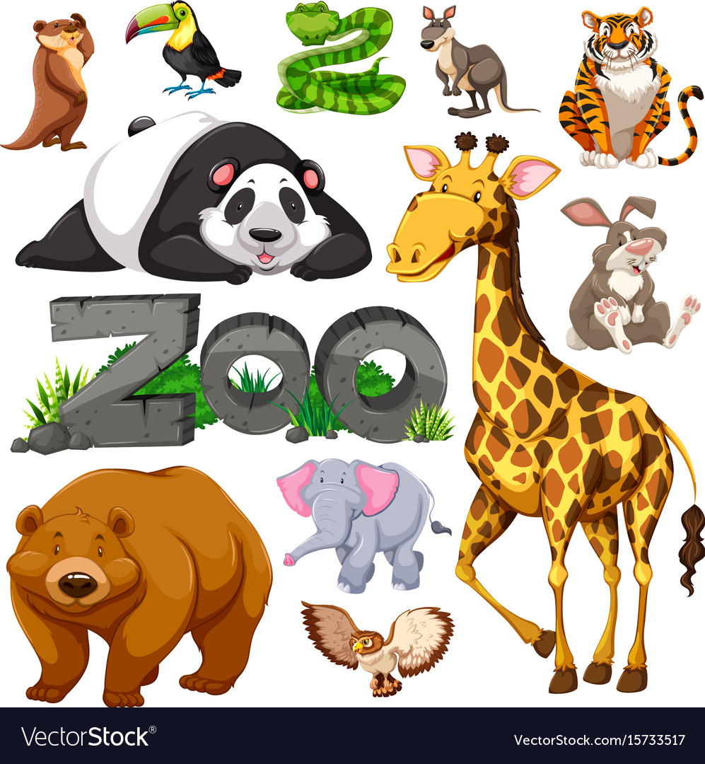 Zoo and different types of wild animals Royalty Free Vector