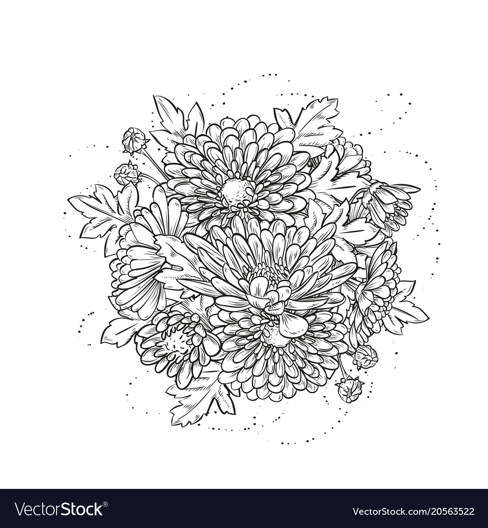 Abstract elegant template with chrysanthemum Vector Image