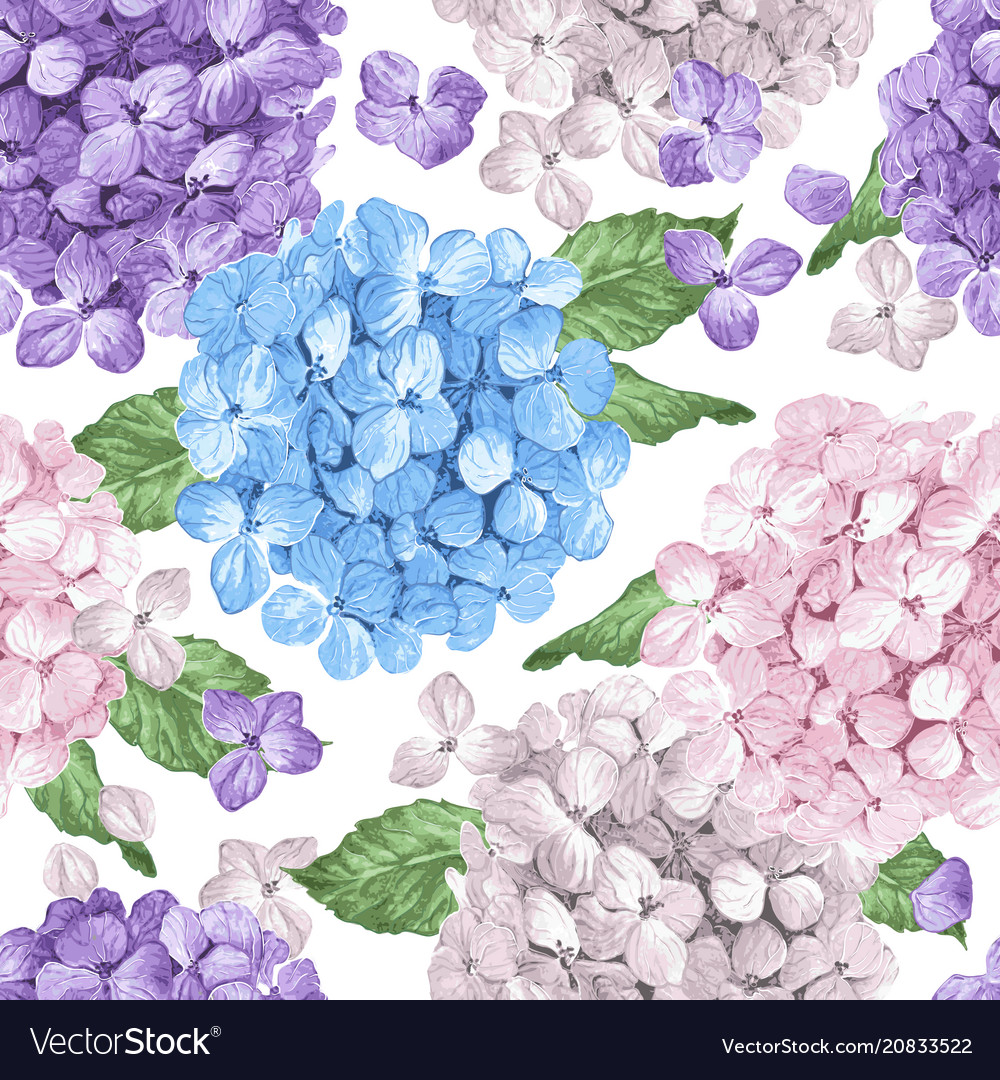 Hydrangea flowers petals and leaves in watercolor vector image