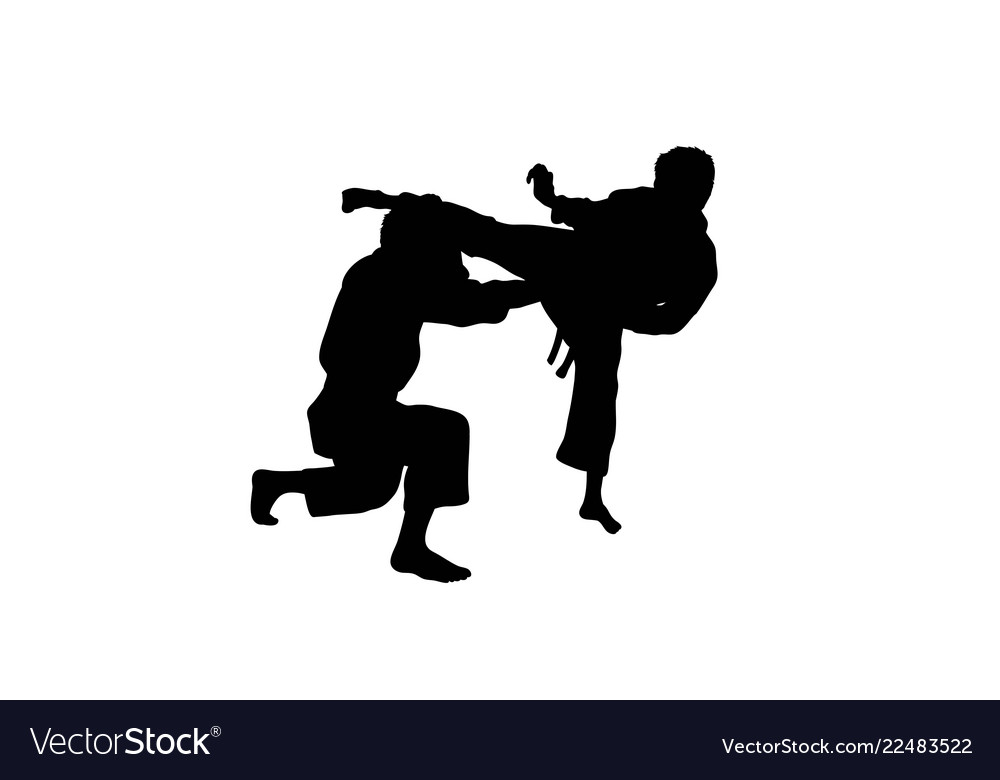karate fighting seamless