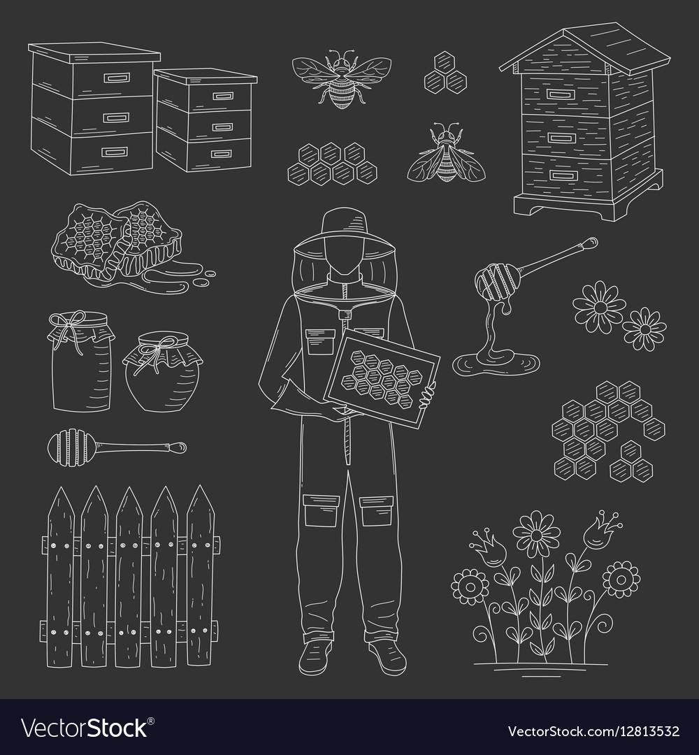 Beekeeper and honey set vector image