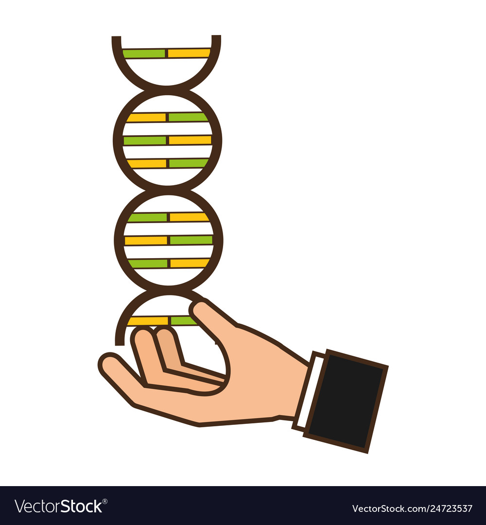 Hand with molecule dna science