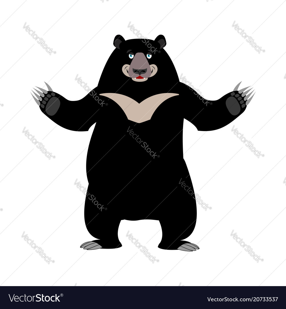 Himalayan bear happy emotion merry wild animal