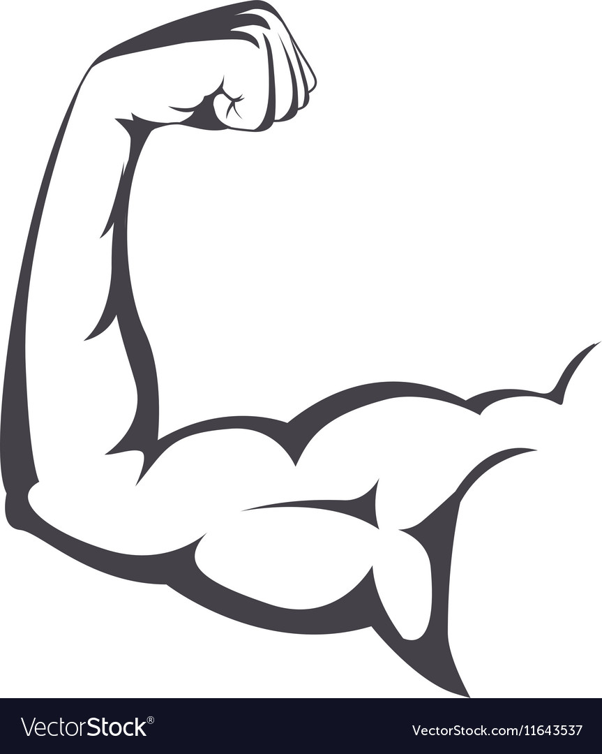 Muscular arm with a clenched fist