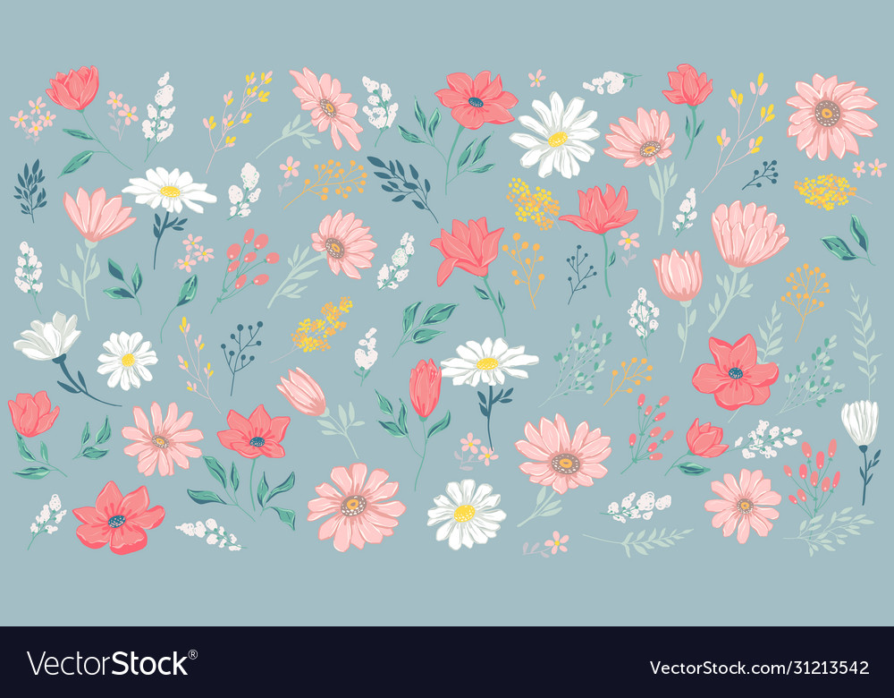 Petal and flowers