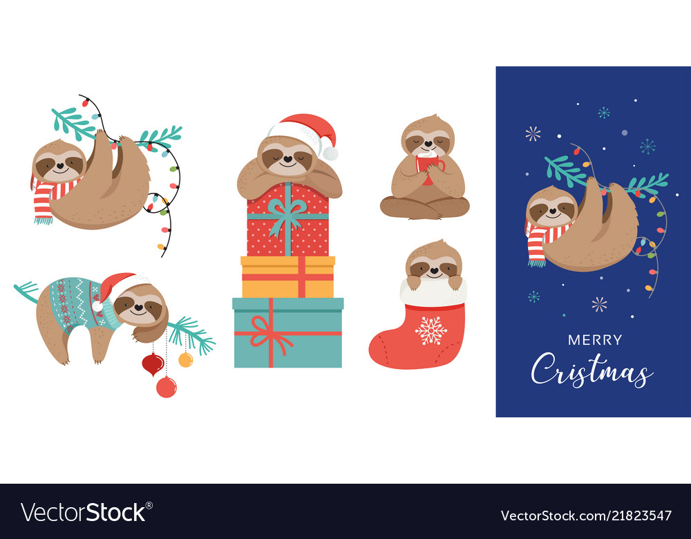 Funny Christmas Pics.Cute Sloths Funny Christmas With