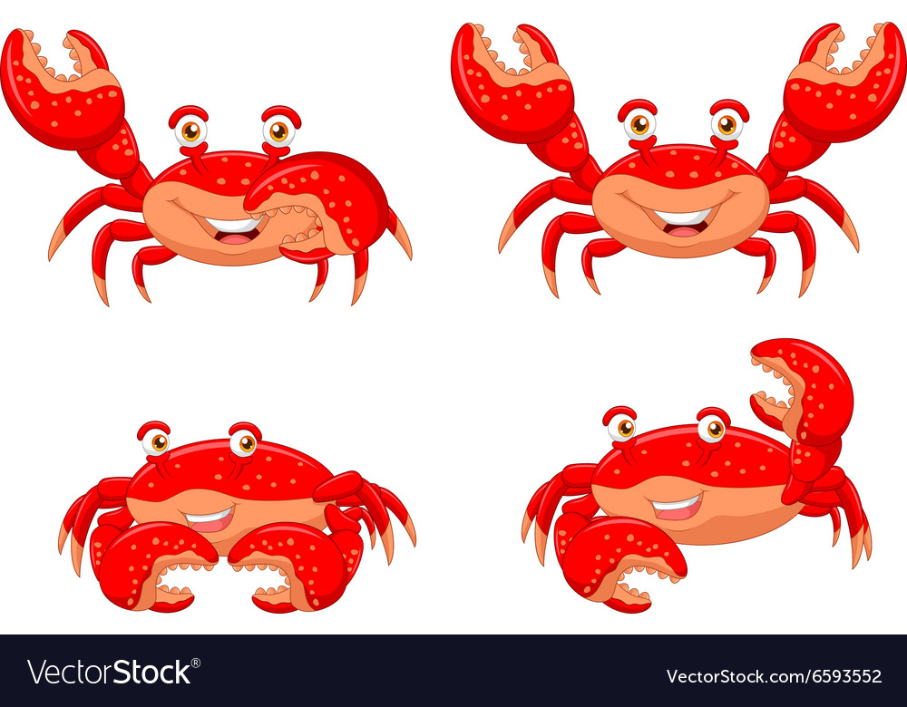 Cartoon crab collection set isolated