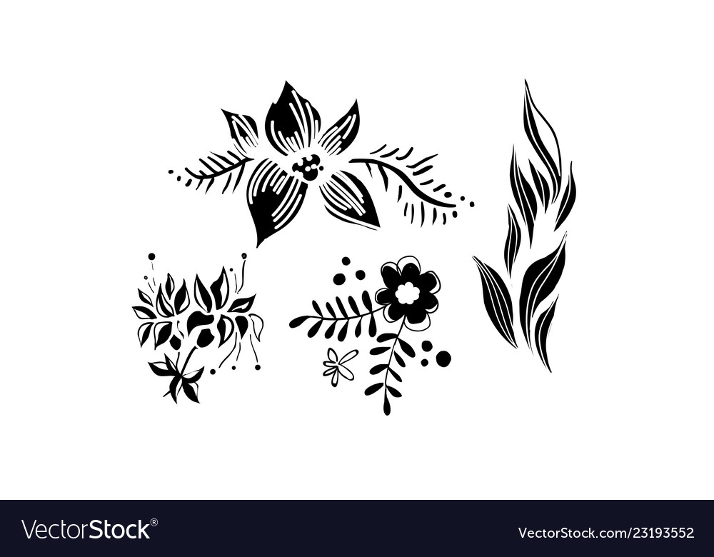 Flowers and leaves set floral design elements