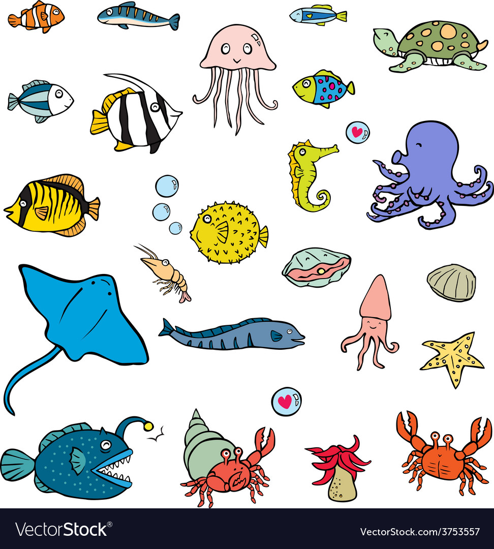 aquatic animals royalty free vector image vectorstock