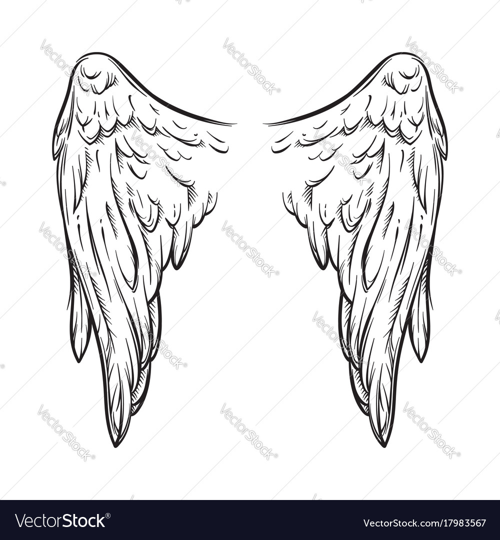 White Angel Wings Tattoos: Angel Wings Isolated On White Tattoo Design Vector Image
