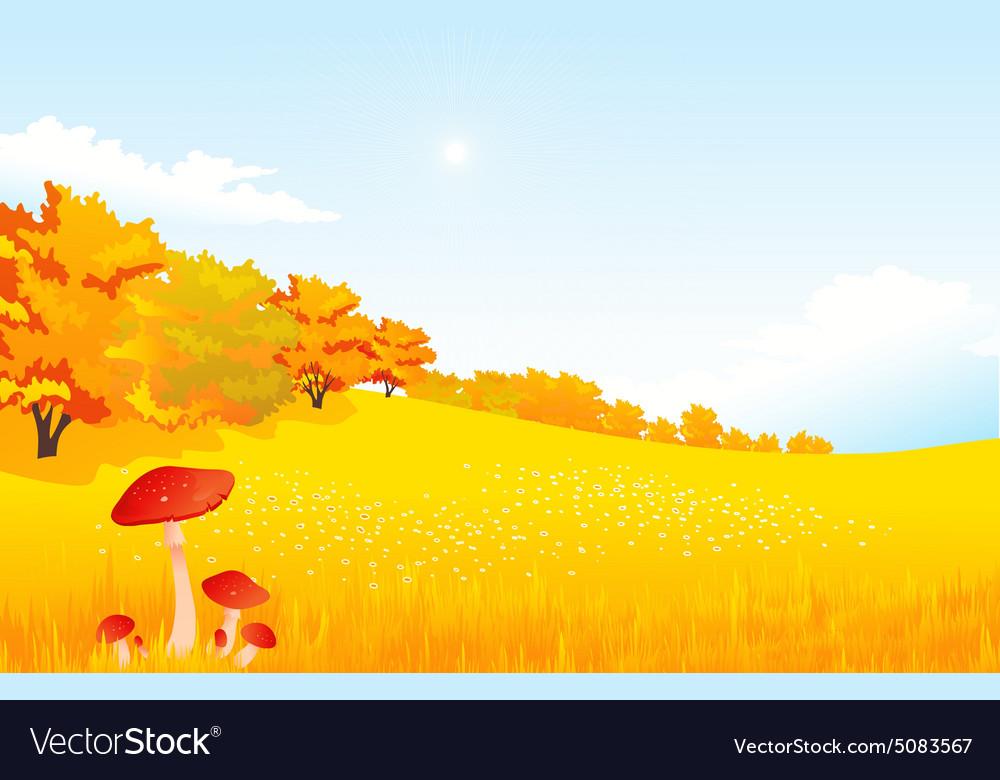 Autumn rural landscape with