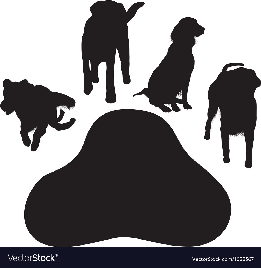 Dog paw vector image