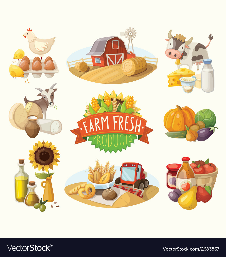 Set of with farm fresh products