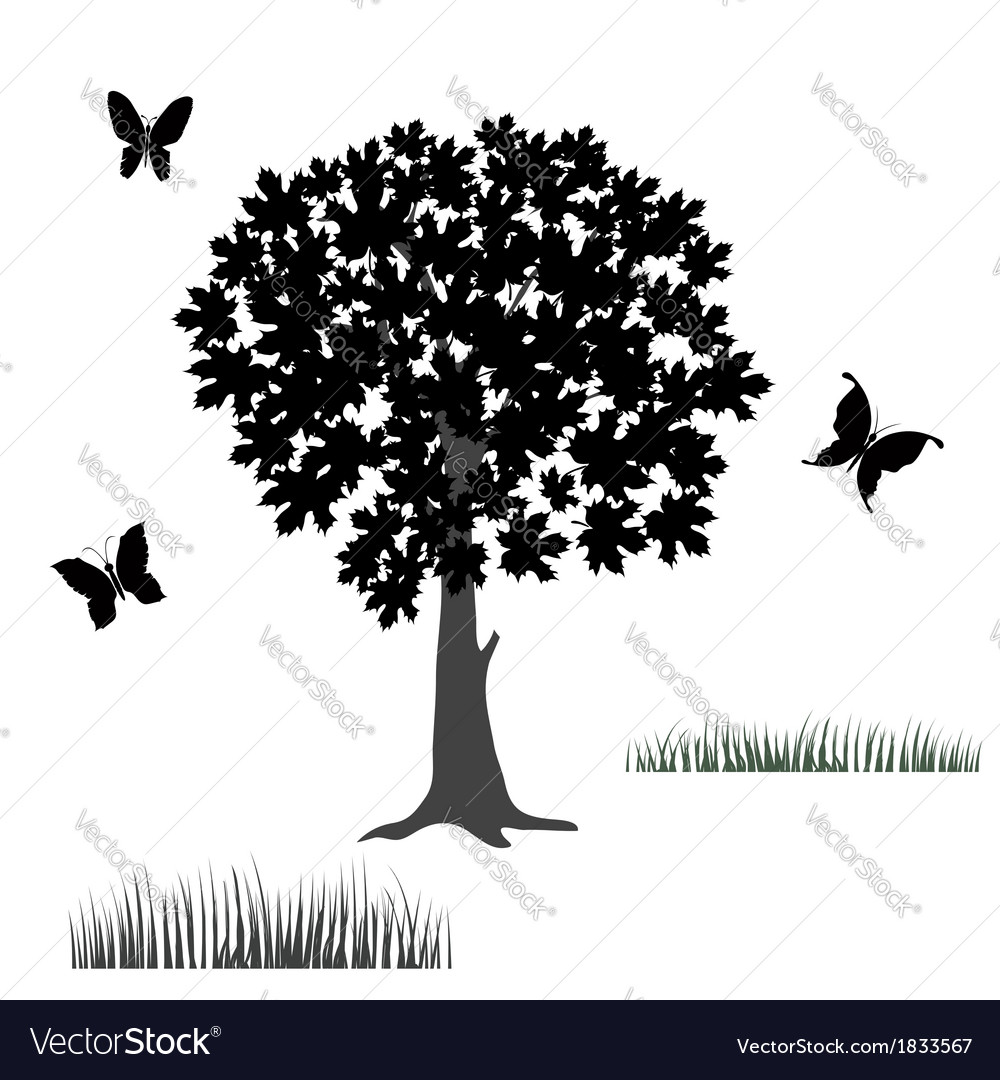 Tree and butterflies vector image