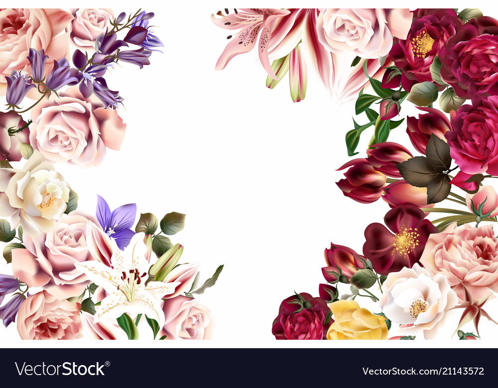 Beautiful background or invitation with rose