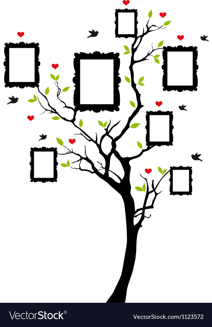 Family tree with picture frames Royalty Free Vector Image