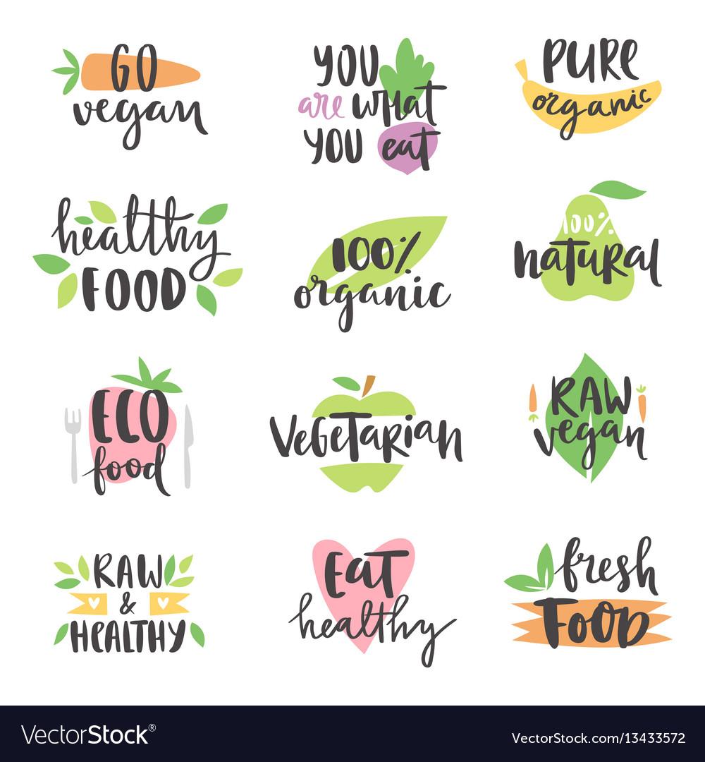 Hand drawn style set of bio organic eco healthy vector image