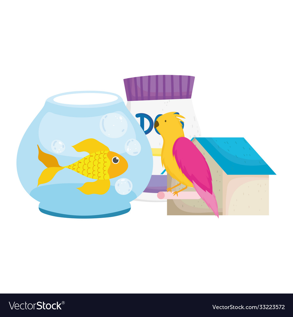 Pet shop fish bird house and package food animal