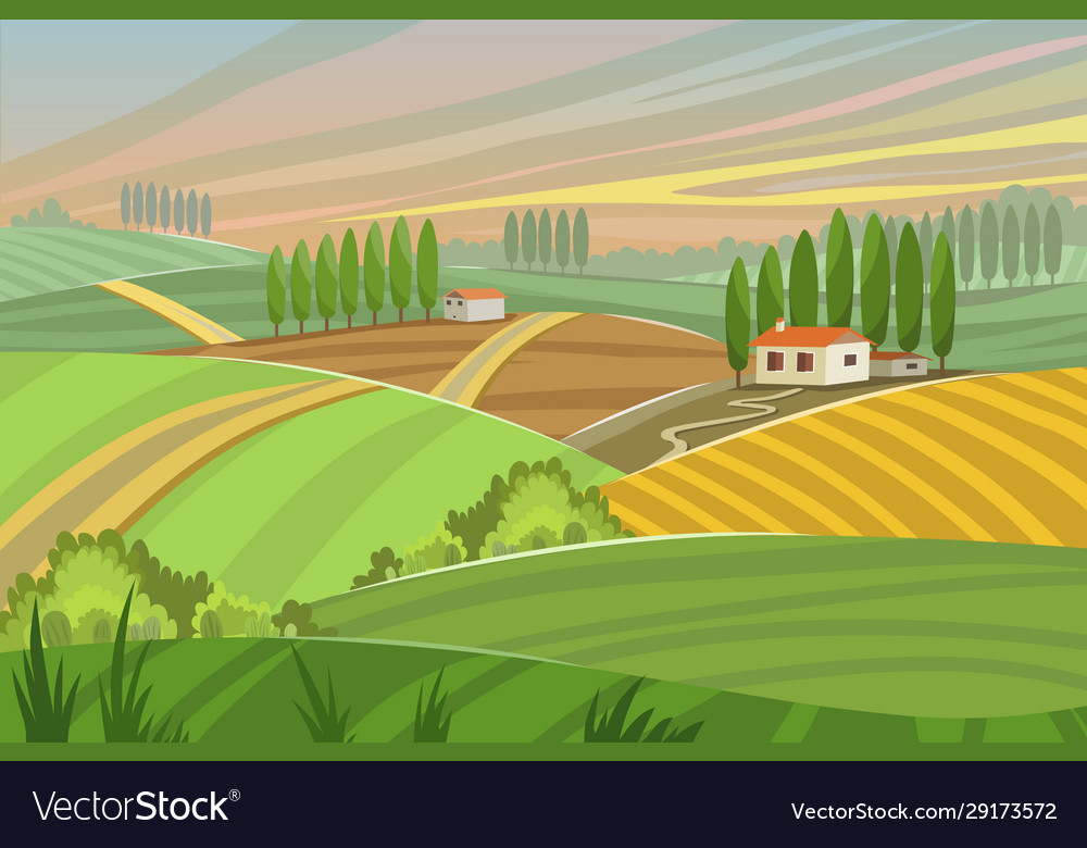 Rural tuscany landscape in summer sunset