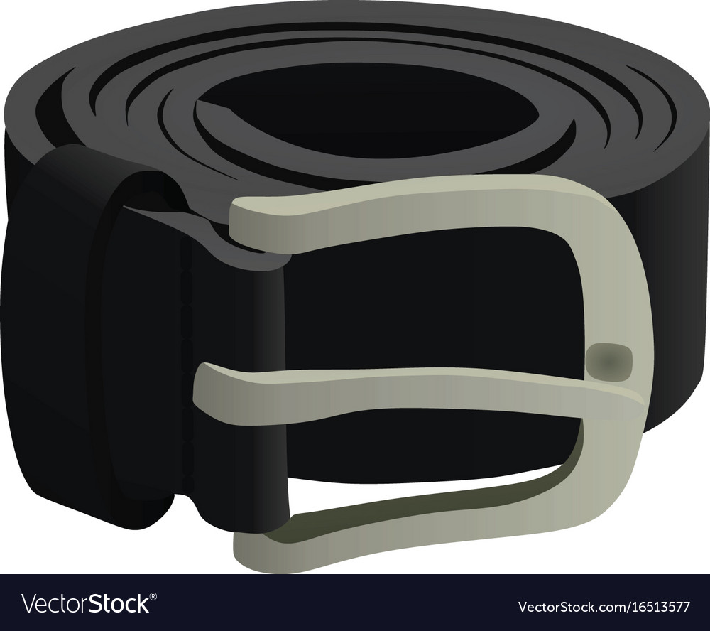 Black belt vector image