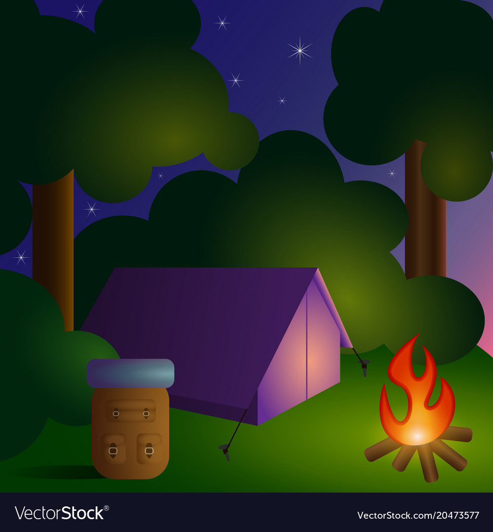 Camping in forest-2