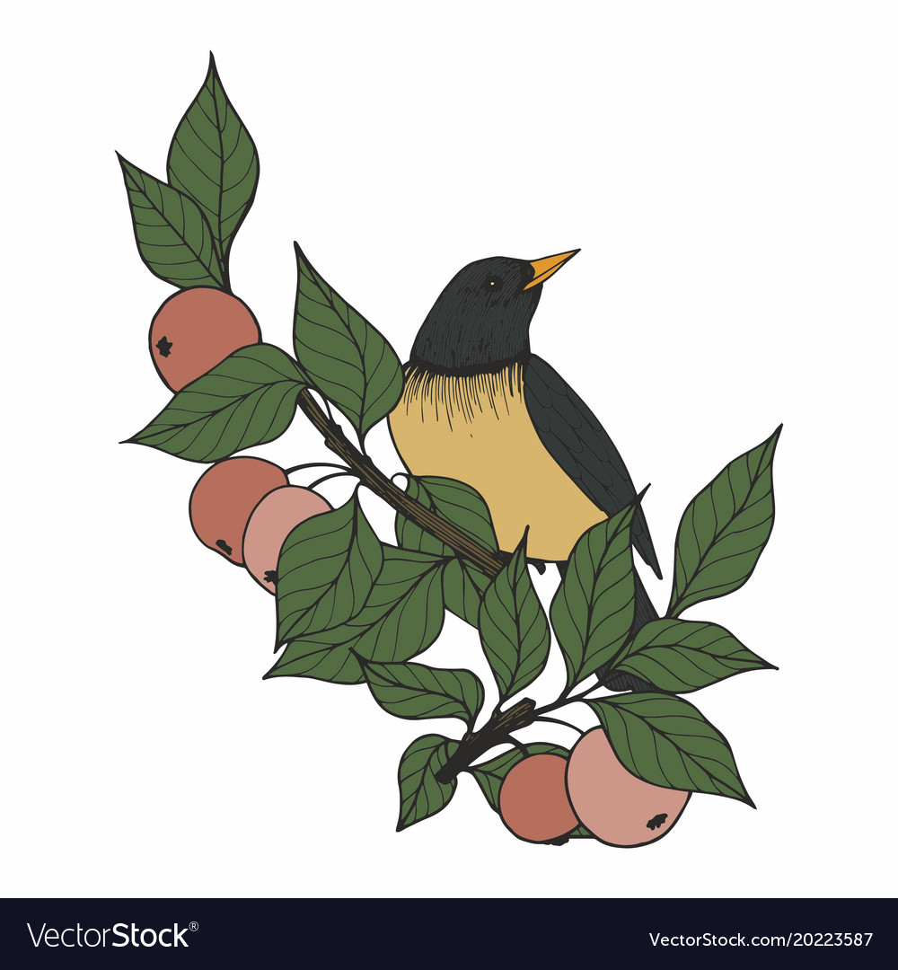 With a bird and apple tree branches