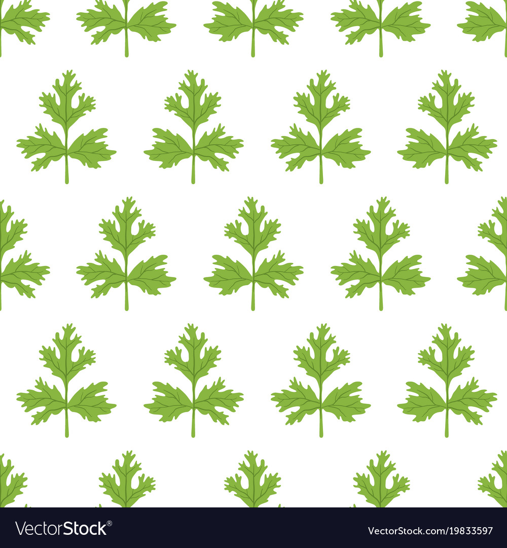 Coriander seamless pattern cartoon flat