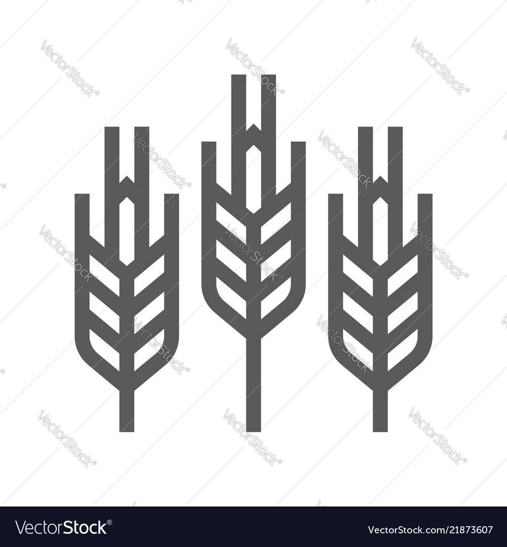 Cereals wheat line icon