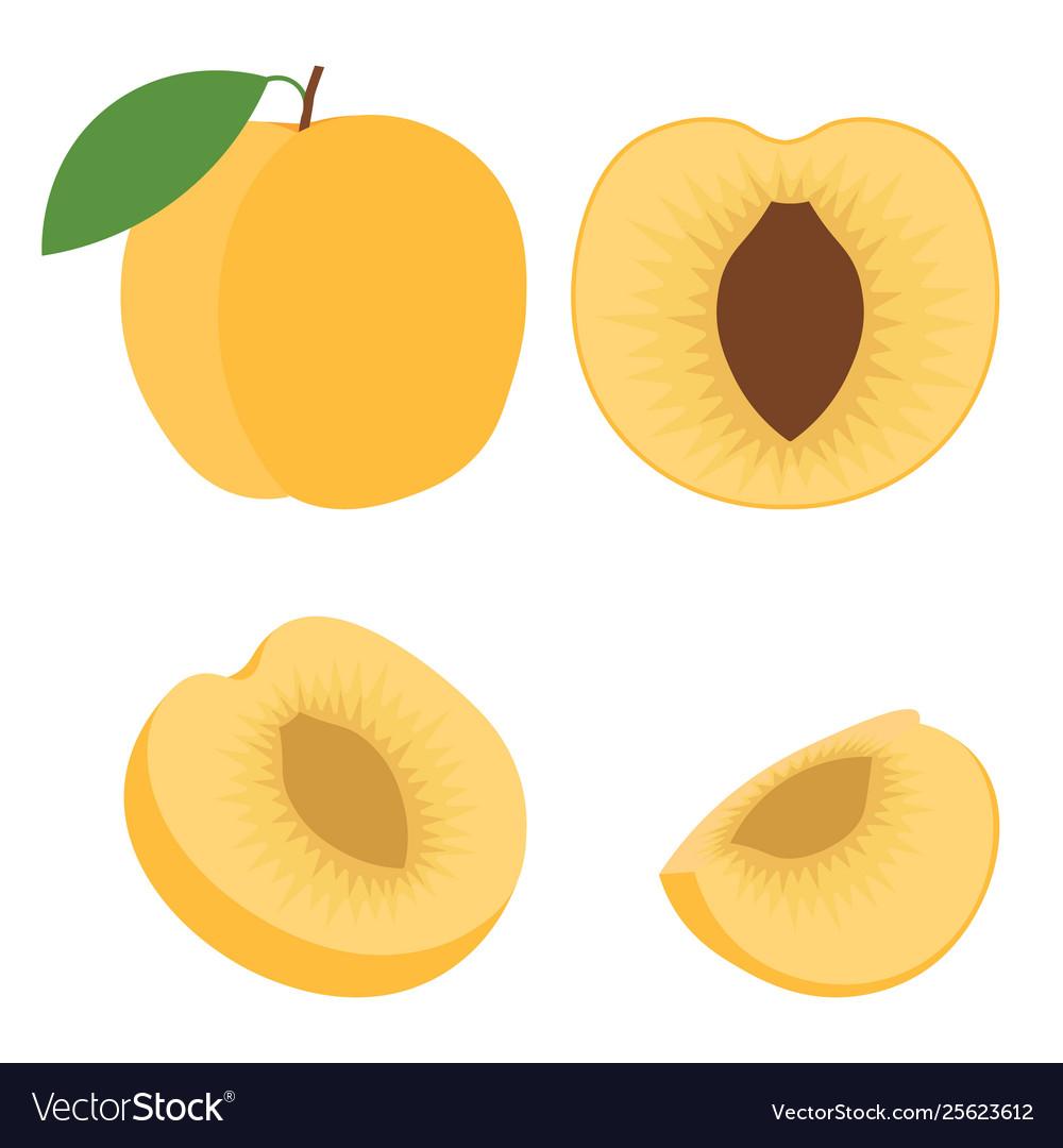 Abstract Icon Logo For Whole Ripe Fruit Orange