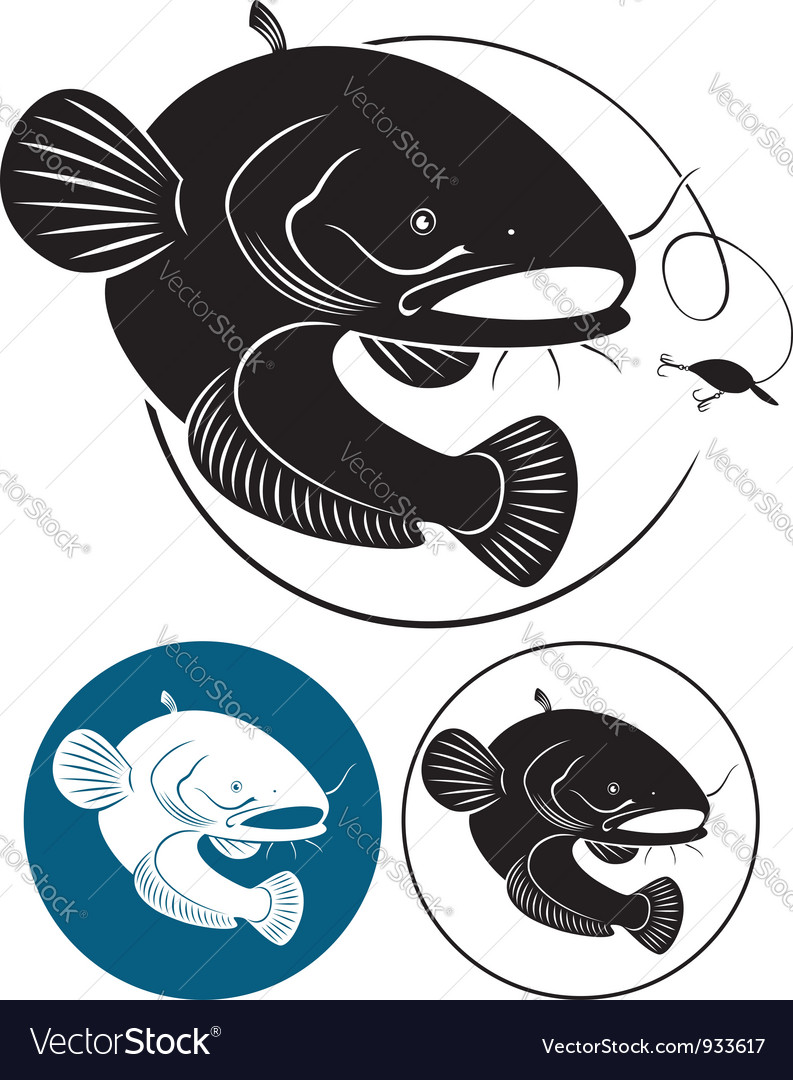 Catfish vector image
