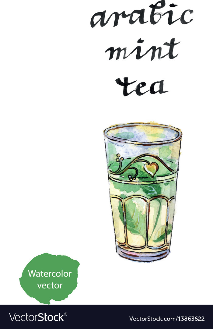 Arabic mint tea vector image