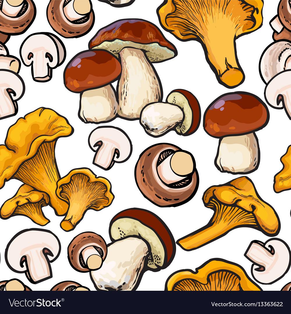 Seamless pattern of chanterelle champignon